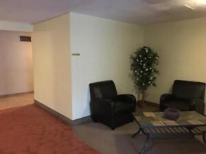 Tillsonburg 2 Bedroom Apartment for Rent in Quiet Neighbourhood
