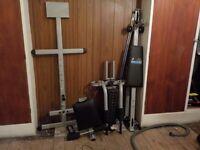 A Carl Lewis Multi Gym
