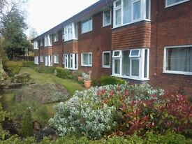 **Over 55's only** Studio apartment for rent in Fallowfield, Manchester M14 - available now