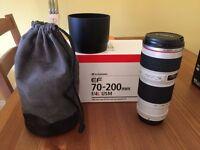 Canon 70-200mm f/4L USM lens - £350 - like new.