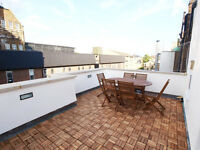 Stunning & modern 3 double bedroom maisonette with private roof terrace in the heart of FinsburyPark