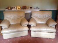 Leather Cream Armchairs