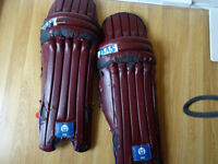 BAS Vampire Pro Cricket Pads And Cricket Gloves