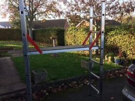 Youngman combination platform ladder