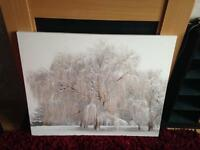 Large Glitter Canvas Photo