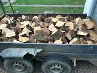 Firewood logged and cleaned for open fires or multi fuel burners, 8x5 ft trailer load free delivery