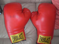 Everlast boxing gloves