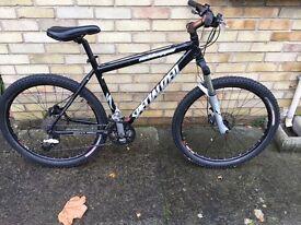 Specialized Rockhopper Mountain Bike