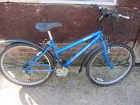ladies bsa mountain bike 16inch frame with lock and lights £45.00