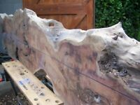 Yew Timber/Wood Waney Edge Boards, Slab, beam air dried kiln dried Wanted