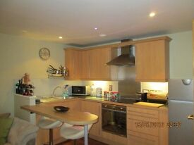 Not To Be Missed flatshare Great Double ensuite Bedroom in Spacious City Centre Apartment