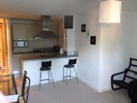 1 bedroom apartment in the city centre
