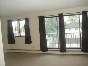 1 Bdrm Apt. AVAILABLE NOW Close to Yellowhead Trail!