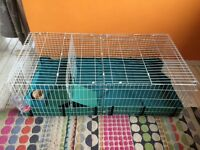 Brand New Guinea pig habitat cage/hutch