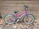 British eagle firefox kids bike from 9 years old, 24 in wheel, 15 gears, been serviced recently