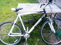 Mountain Bike ( Read description )