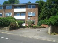 Spacious One Bedroom ground Floor Flat. 10 minutes walk from Guildford town centre