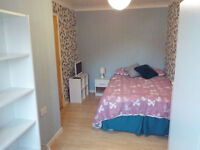 Large single / small double room to rent