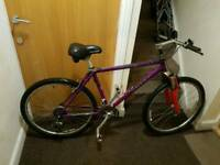 Trek Purple mountain bike with 26 inch wheel