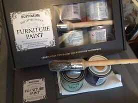 Rust-oleum Funiture Paint