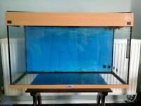 Juwel rio 125 range fishtank