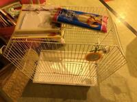 Bird cage with toys and swing