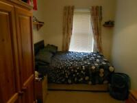 Room in a 2 bedroom apartment on Derryvolgie Av