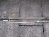 Fishing rod by Edgar Sealey, White Wonder.