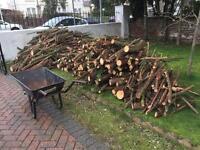 Free wood/logs/tree cutting