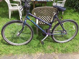 ***Cheap Bike For Sale***