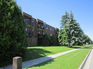 Beautiful and Affordable 1-3 Bedroom Suites Available Kitchener / Waterloo Kitchener Area image 12