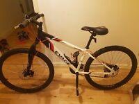 White adult female mountain bike