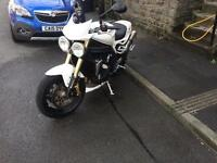 Triumph speed triple 1050 tiger Daytona street fighter