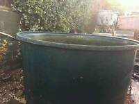 Koi pond holding tank