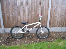 BMX style bike with stunt pegs front and back