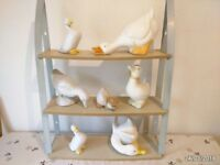 Duck collection on shelf unit