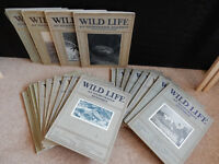 Antique Wild Life an Illustrated Monthly magazines