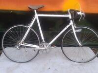 """Holdsworth Criterium Large 24"""" Road Bike Frame Reynolds 501 tubes"""