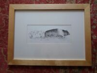 "SUPERB LARGE SIGNED LIMITED EDITION FRAMED PRINT SADDLEBACK SOW JENNEFER BRERETON 31""x 23"" EXCELLENT"