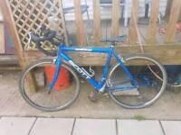 Scott elite road bike 54cm frame