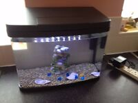 FISH TANK with built in led lights/day and blue moon/,gravel,water filter,ornament, about 40 litres
