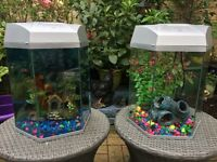 Two 20L fish tanks for sale! £30 each