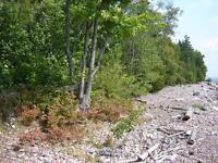 LOT 49 FOUR SEASONS DRIVE, GOULAIS RIVER