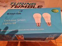 British gas exclusive smart lights kit