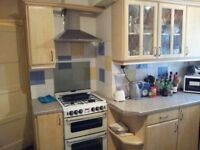 Spacious double room to let