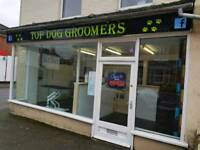 New grooming salon