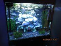 Juwel Lido 120 Fish Aquarium ...
