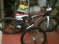 Cruiser BMX