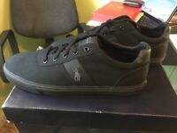 Polo Ralph Lauren trainers (brand new)
