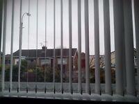 Vertical window blind